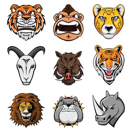 animal head: Animal Head Collection : Nine Illustration