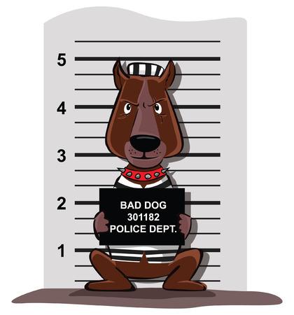 criminal: criminal Dog