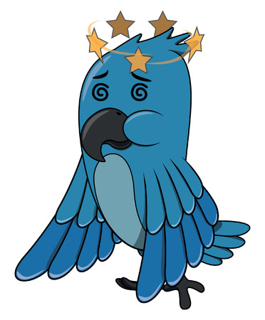 confundido: Confundir Aves