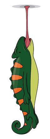 chameleon lizard: camaleonte lucertola Vettoriali