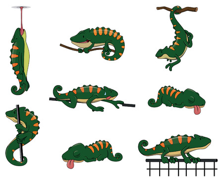 chamaeleo: Chameleon Character set collection