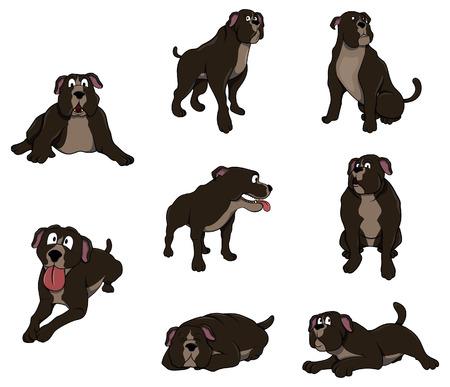 bull mastiff: Pitbull Character set collection