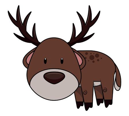 baby deer: Baby deer Illustration