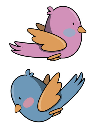 funny: Funny bird