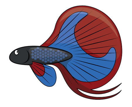 betta: betta fish cartoon illustration