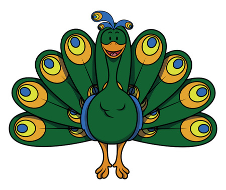 peacock: Peacock cartoon Illustration
