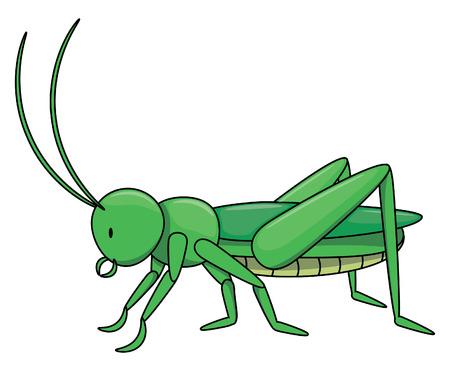 langosta: Locust ilustraci�n de dibujos animados aislado en blanco Vectores
