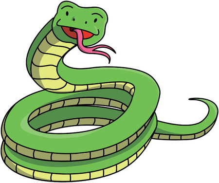 anaconda: Green Snake Illustration