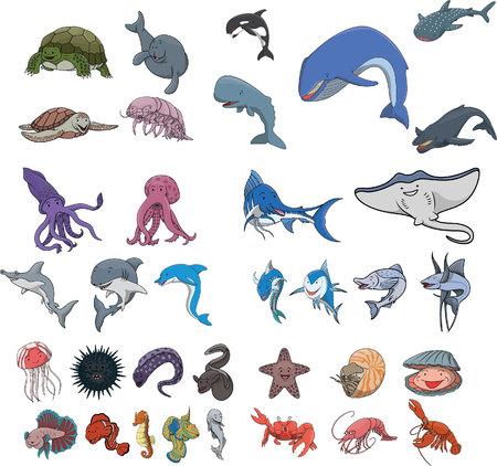 sea animal: Sea animal underwater Illustration