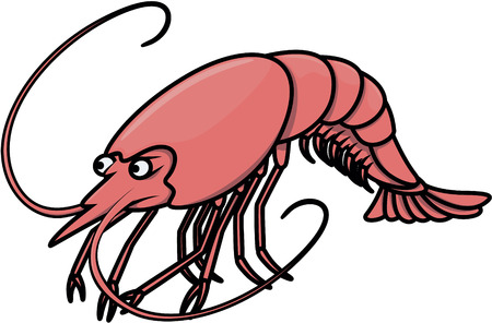 Shrimp Cartoon Illustration