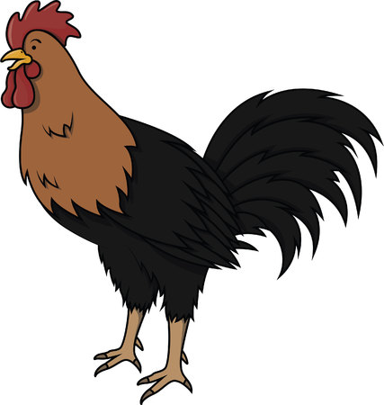 chicken coop: Rooster cartoon illustration