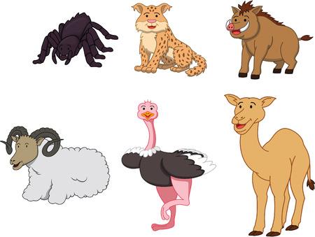 animal: Desert animal cartoon illustration