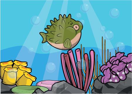 puffer fish: Puffer fish underwater scenery
