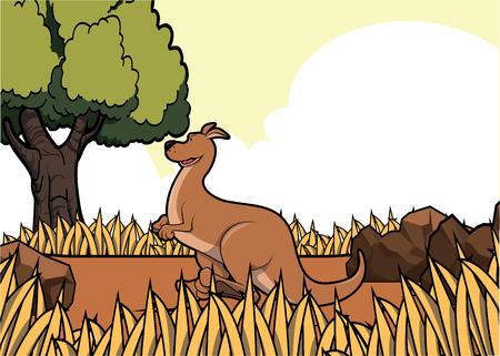 kangoroo savanah safari