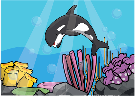 light maldives: Orca underwater scenery