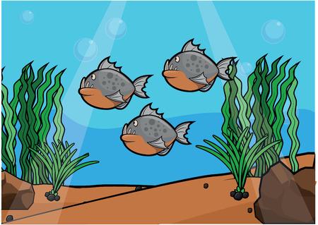 light maldives: Piranha underwater scenery Illustration