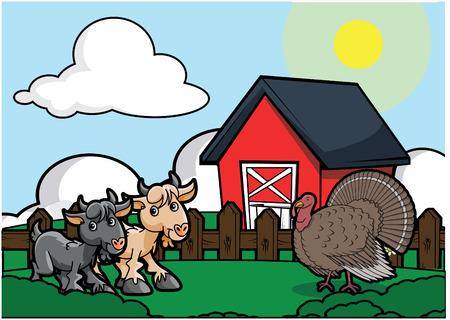 country side: Goat and turkey bird farm Illustration