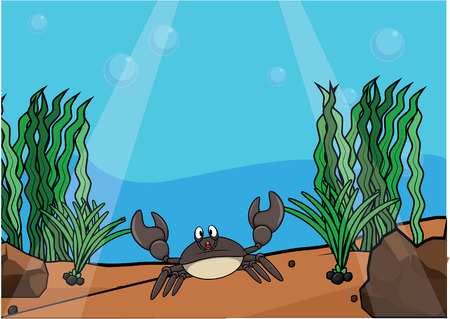 light maldives: Fresh water crab underwater scenery Illustration