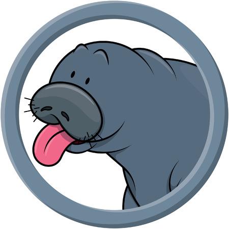 manatee: animals circle minatte