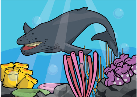 vectore: Hunch back whale underwater scenery