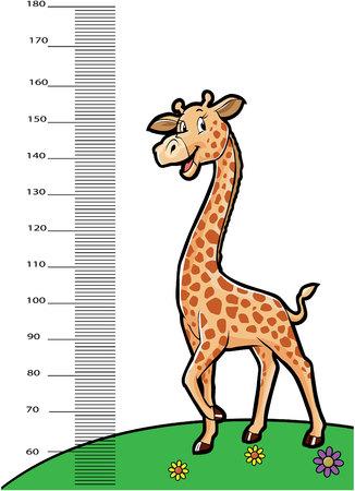 centimetre: giraffe animals as ruller