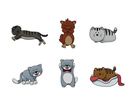 siamese: cat illustration design collection Illustration