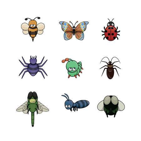 crawly: insect illustration design collection