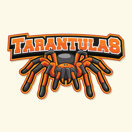 arachnida: tarantula illustration design Illustration