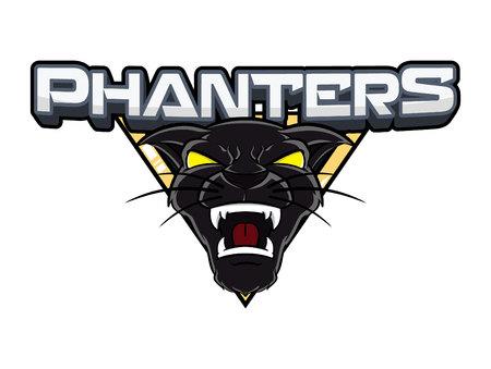 panthers: panthers banner illustration design