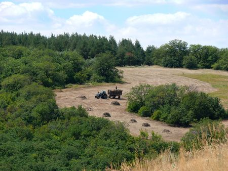 Kind from a hill. Far far small blue tractor carries hay. Stock Photo