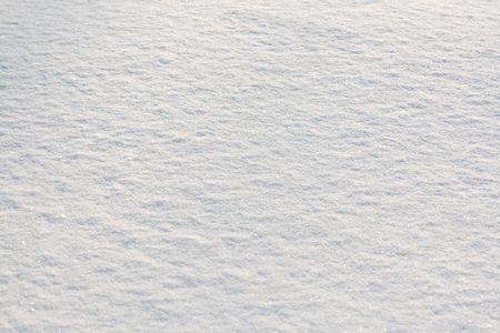 Fresh snow sparkle in the sun. Snow background.