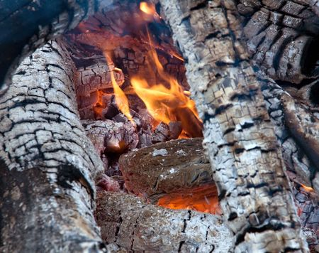 Bonfire. Live fire. Firewood burn hot. Stock Photo