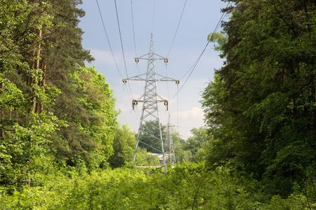 Power lines on a background of green forest. Stock Photo