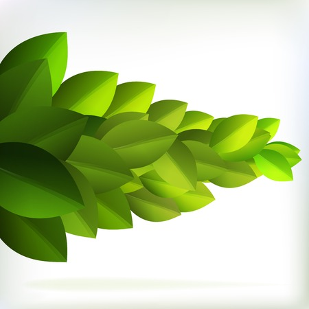 Fresh green leaves for summer design    EPS10 Vector
