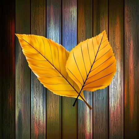 Autumn Leaves over wooden background  plus  Illustration