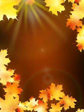 Autumn leaves on colorful  plus