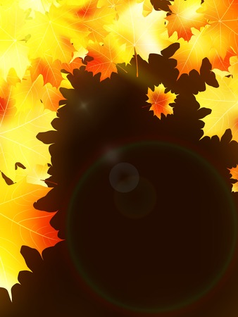 copy spase: Autumn leaves on colorful  plus