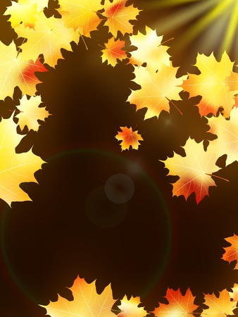 copy spase: Autumn leaves on colorful  plus EPS10