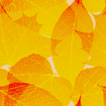 Seamless autumn leaves pattern. plus EPS10 vector file Vector