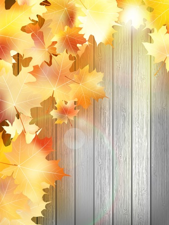Autumn Leaves over houten achtergrond. EPS10