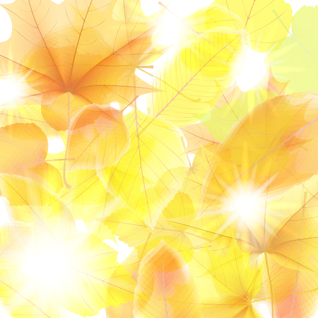 Autumn background with maple leaves. plus EPS10 Stock Photo