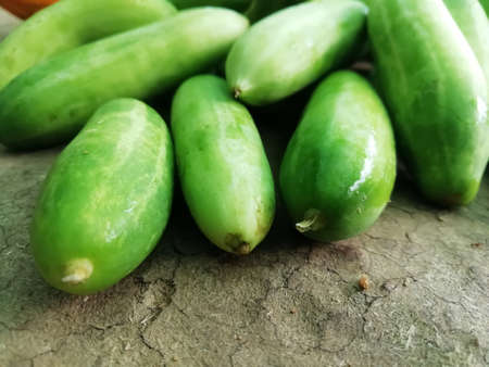 selective focus on vegetables( Ivy gourd)isolated on a surface closeup view Imagens