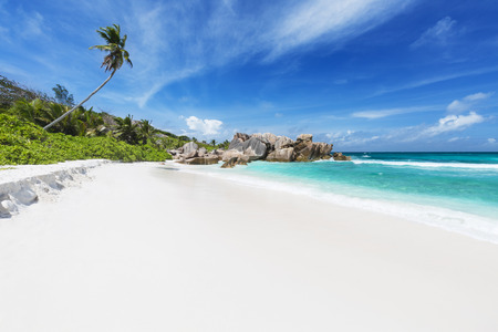 cocos: Coconut palm tree and turquoise water at Anse Cocos in La Digue, Seychelles Stock Photo