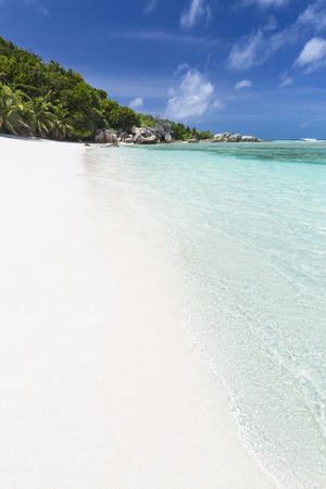 pristine coral reef: Perfetto spiaggia bianca di Anse Pierrot vicino Fonte D