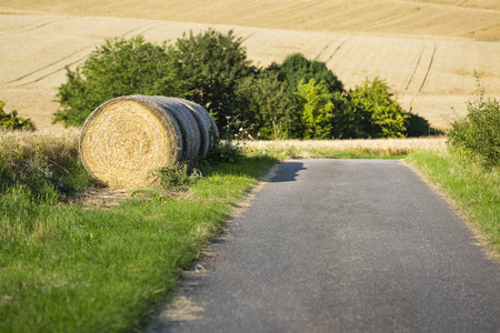 leading: A country road leading past some hay bales on a hill in northern Eifel landscape in Germany with selective focus.