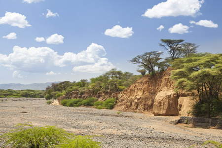 river bed: An empty river bed between Marigat and Lake Baringo in Kenya during dry season Stock Photo