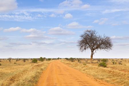 tsavo: Landscape in Tsavo East National Park in Kenya. Stock Photo