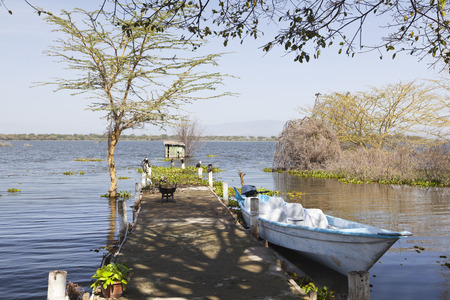 lake naivasha: Jetty and a boat at the shore of Lake Naivasha, Kenya