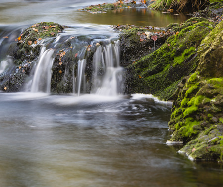 the ardennes: Little waterfall in a mountain river in the High Fens, Ardennes, Belgium, long exposure shot