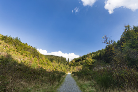 the ardennes: Footpath in the Bayehon Valley, High Fens, Ardennes, Belgium Stock Photo